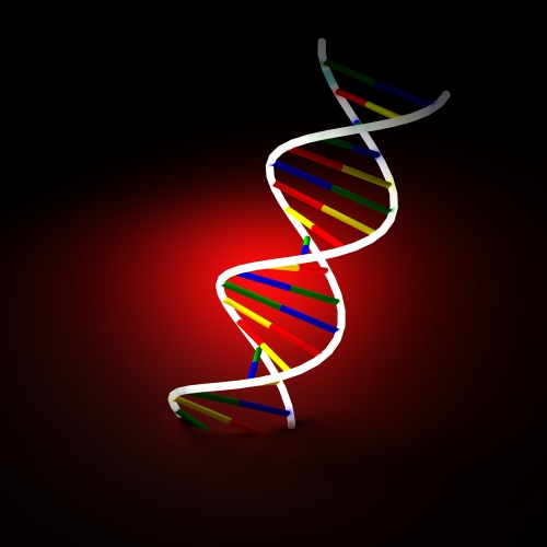 DNA image courtesy of Svilen Milev