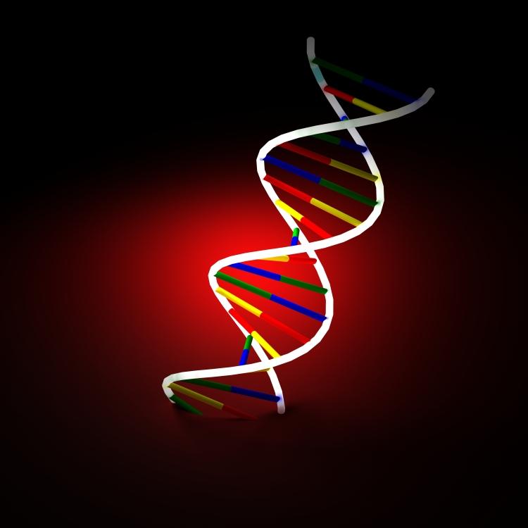 DNA image courtesy of Svilen Milev