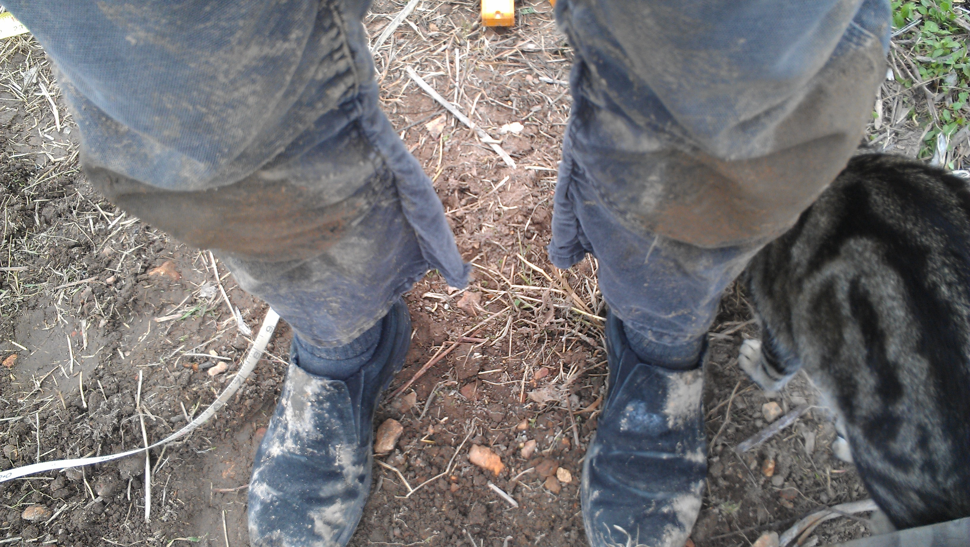 Mud from knees down