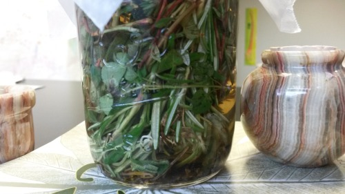 I am making a Four Thieves Vinegar. I will probably also use it for salad dressing.